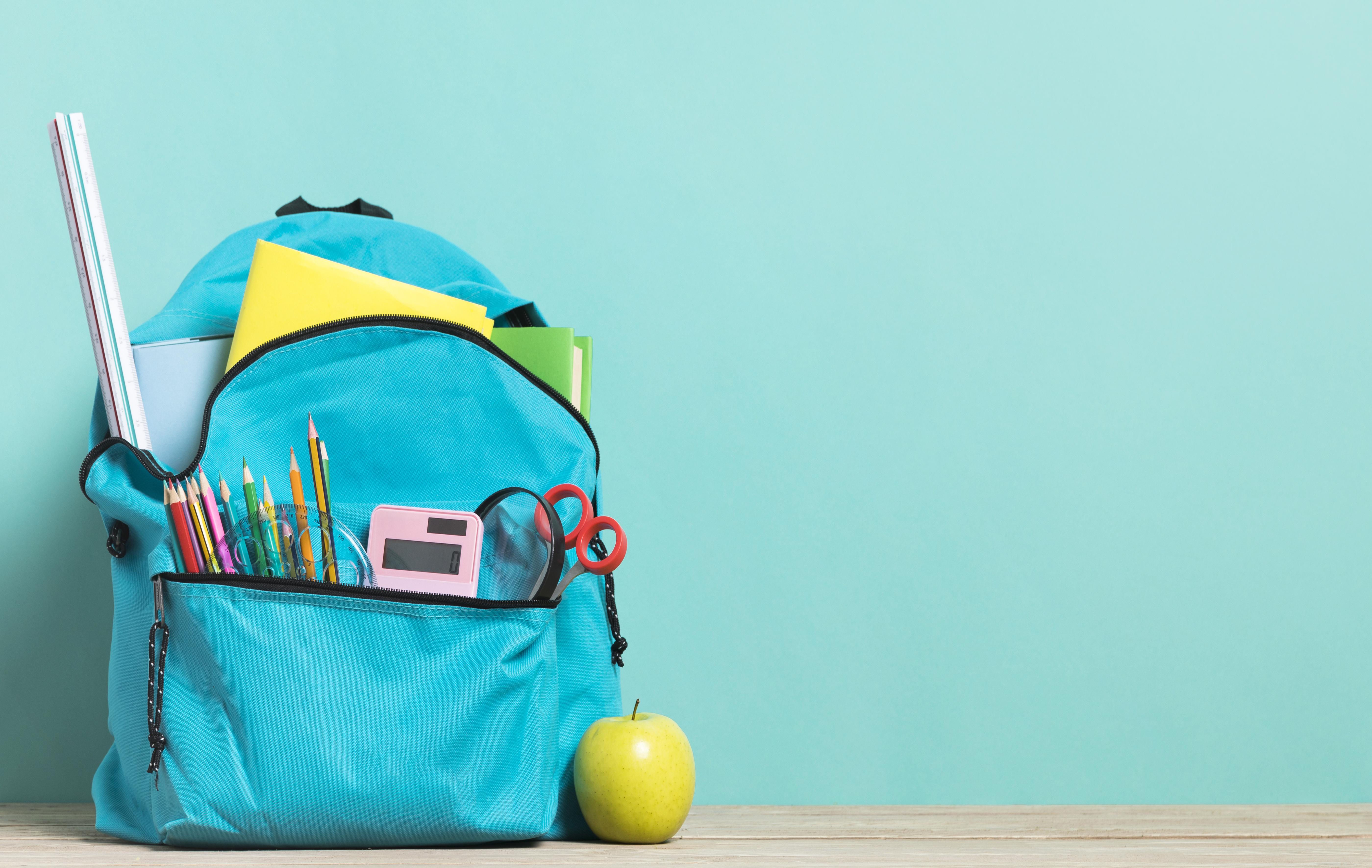 Alegerea potrivită a ghiozdanului pentru BACK TO SCHOOL